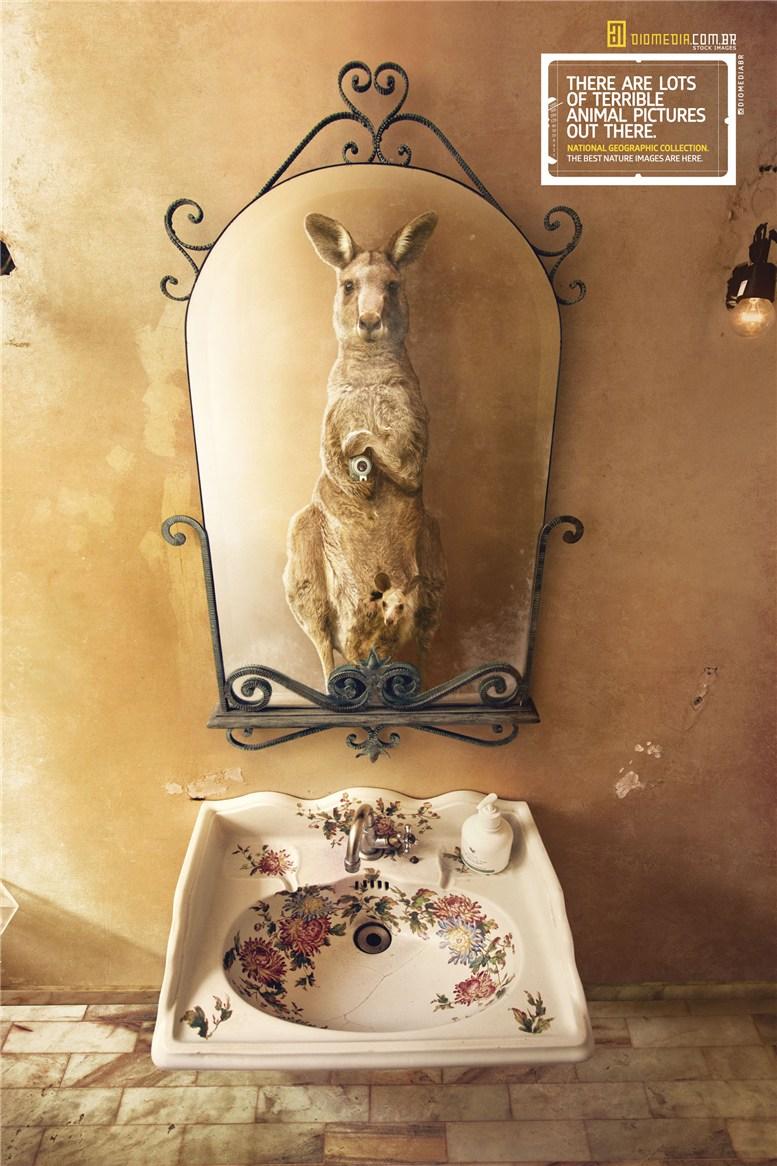 Рекламная кампания сервиса стоковых фотографий Diomedia - National Geographic Collection - Kangaroo