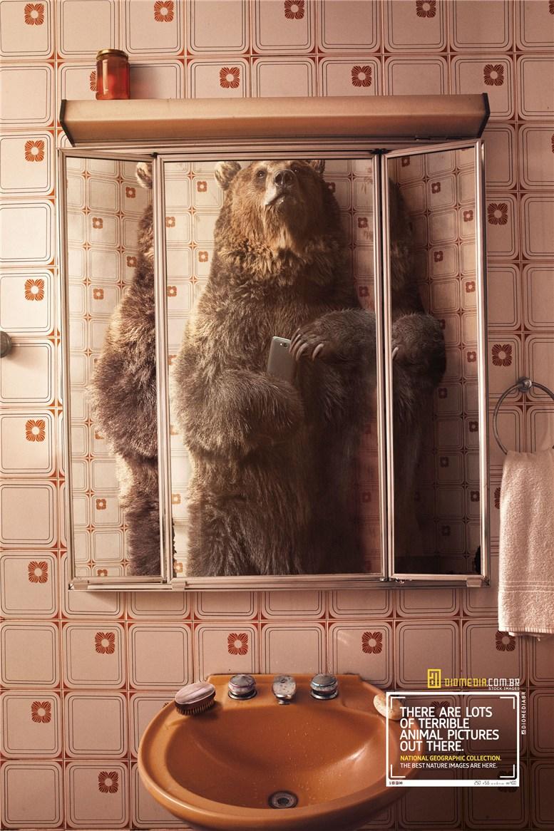 Рекламная кампания сервиса стоковых фотографий Diomedia - National Geographic Collection - Bear