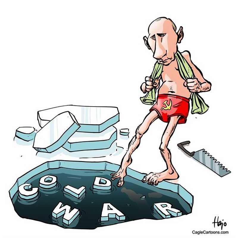 Путин перед погружением в состояние холодной войны (Hajo de Reijger)