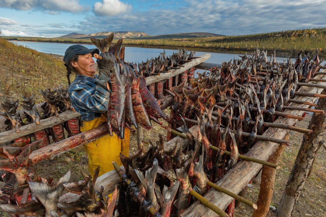 дикая аляска охота и рыбалка