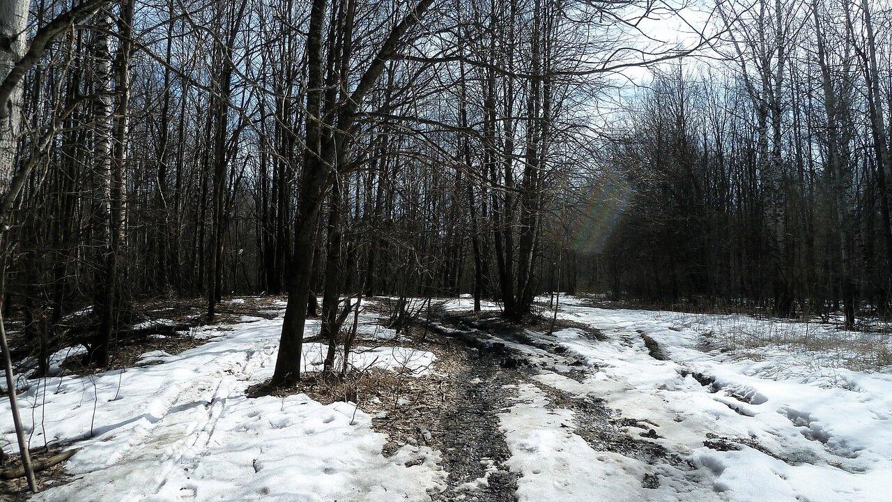 Дорога на Красную речку. Автор фото: Сергей Апполонов