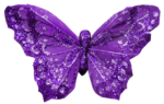 Flower Hallow (4).png