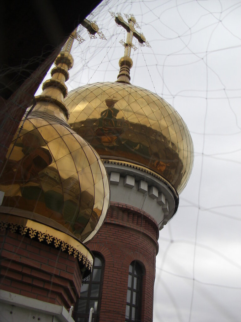 Золотые купола с ажурным декором: вид с колокольни (25.04.2014)