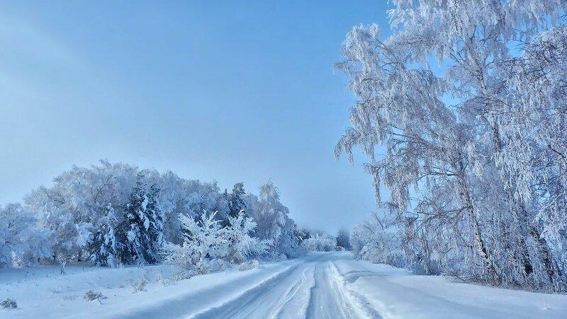 Прогулка по зимней дороге
