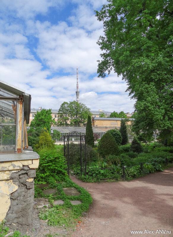 В окрестностях Ботанического сада доминирует телевизионная башня, которая находится совсем рядом.