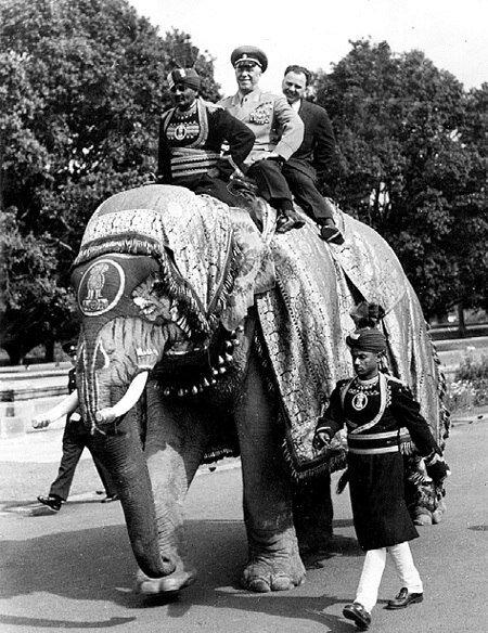 3-Маршал Жуков на слоне во время дипломатического визита в Индию, 1957 г.jpg