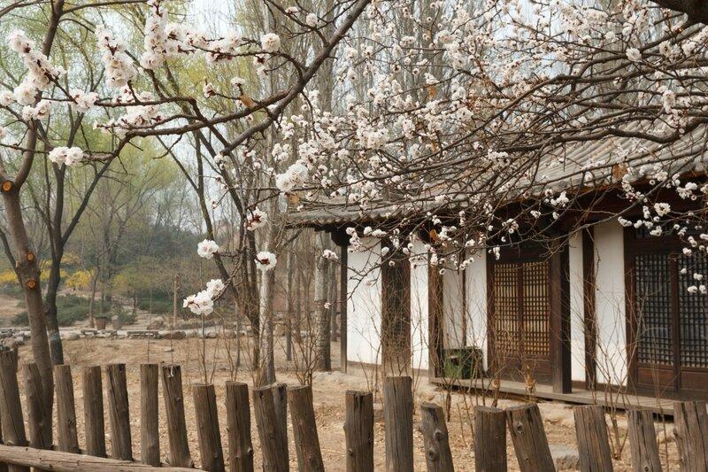 Корейский дом, Парк национальностей, Пекин