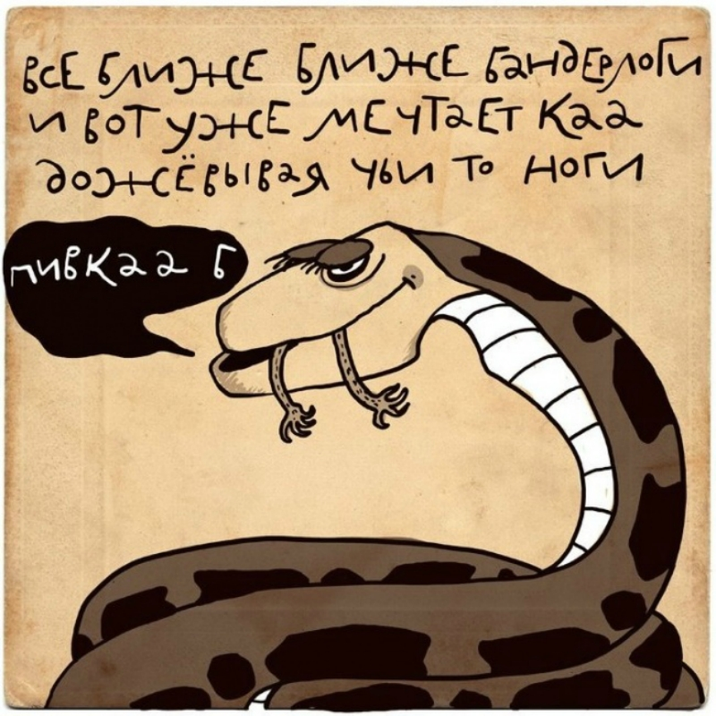 http://img-fotki.yandex.ru/get/9819/6444752.137/0_a2bfc_bc362abc_orig.jpg