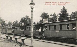 Дачный поезд в Сестрорецке
