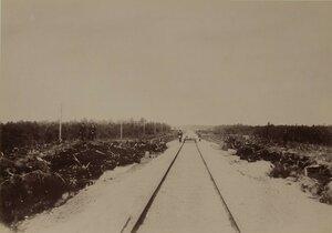 Железнодорожные пути в уезде Ласва