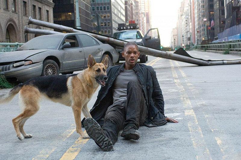 """На сей раз в фильме """"Я- легенда"""" старина Уилл Смит выживал 3 года с собакой. Умер после 1 дня, проведенного с женщиной."""