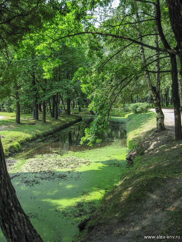 Московский парк Победы. «Дикая» часть парка мне особенно нравится. Удивительное место.
