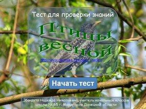 Тест_Птицы весной_Збандуто Н.Н..jpg