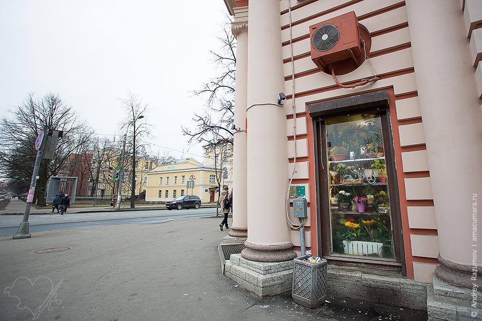 Петергоф фасад здания