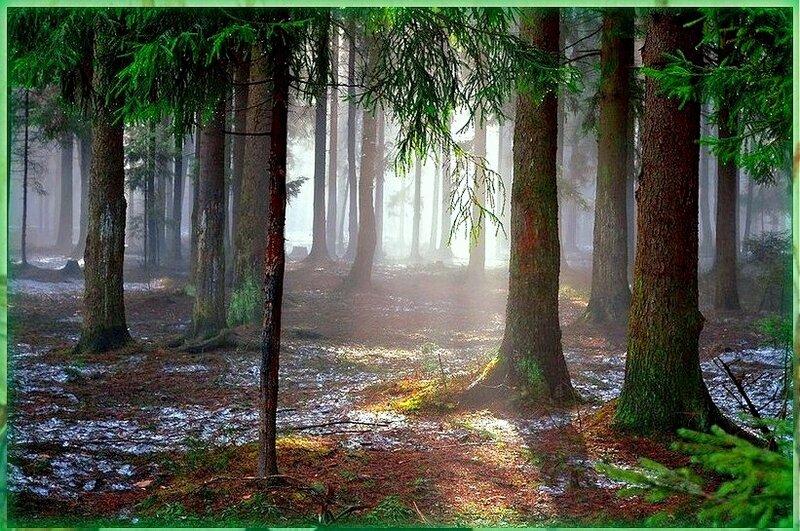 Природа, пейзаж, фото из интернета (128).jpg
