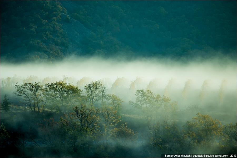 Синий туман
