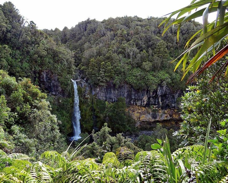 Небольшой водопад у подножия вулкана Таранаки