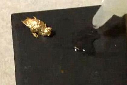 Кусочки золота в проточной воде напугали американцев