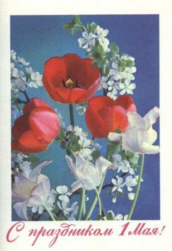 С праздником 1 мая! Фото Г. Костенко 1977 открытка поздравление картинка