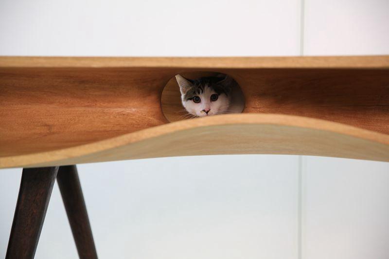 CATable - столик для китайских котиков от студии LYCS architecture. 12 фото