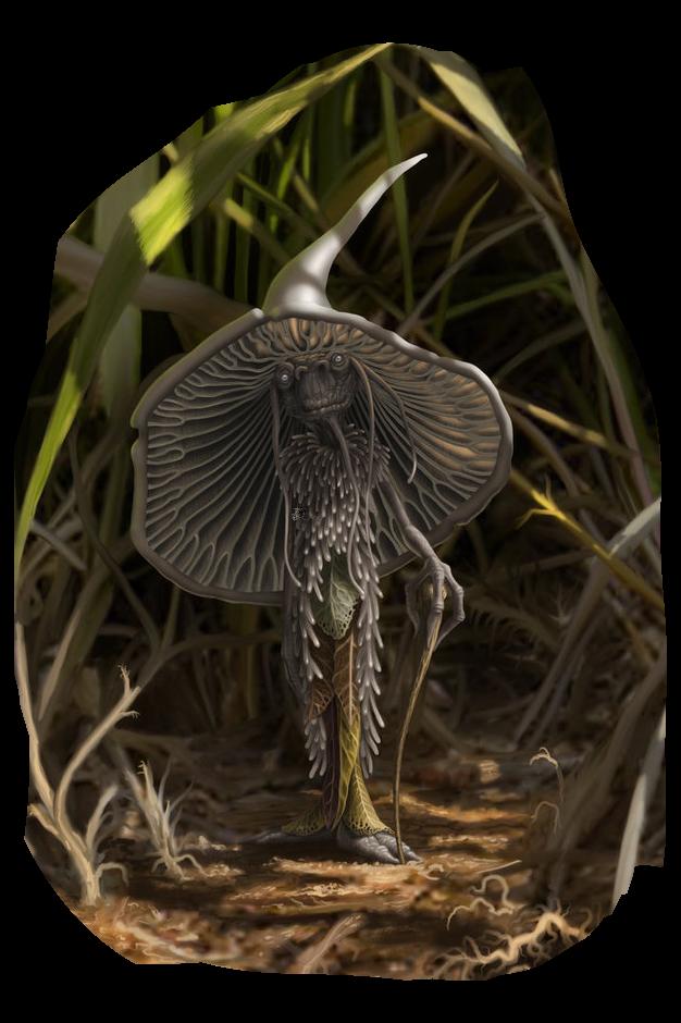 Cherokee_the_mushroom_man_by_bedeekin.png