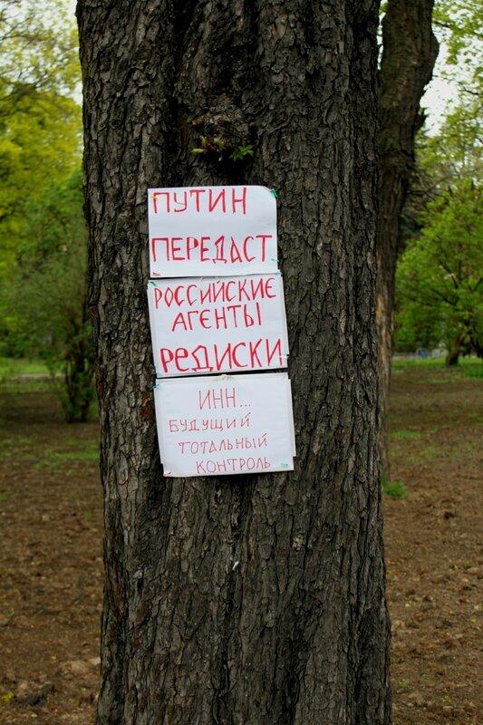 Антироссийская агитация на дереве