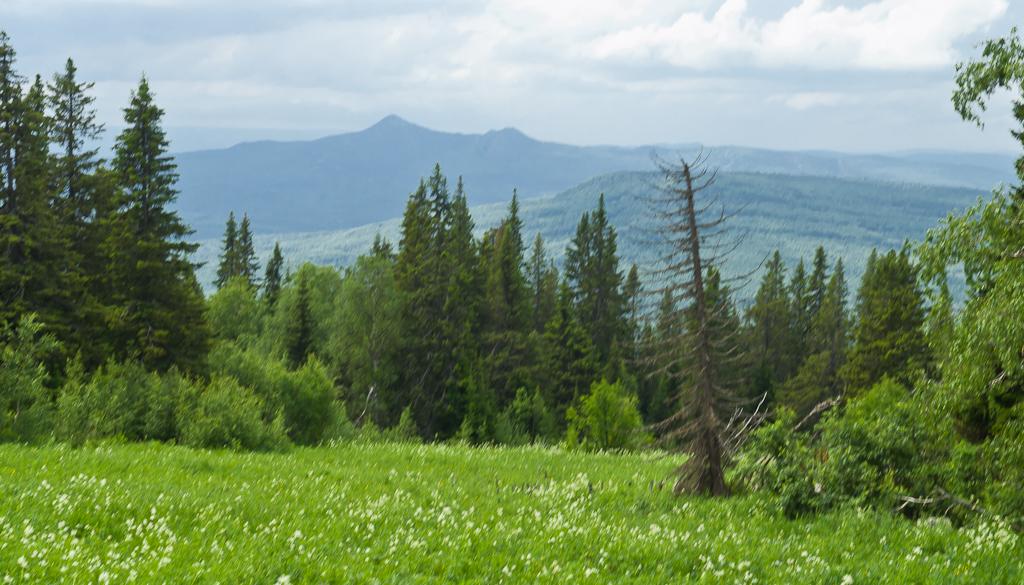 6. Вид на горы Башкирии... Пик Арвякрязь хребта Уралтау на дальнем плане. Конный поход