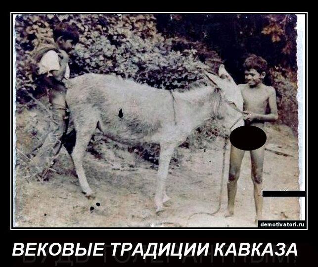 фото чурок и ишаков