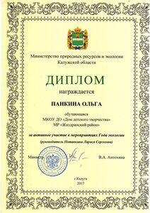 2017 Год экологии. Панкина Ольга