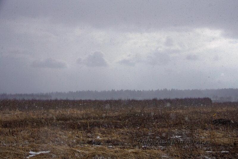 Аэродром Кубинка, показательные полеты Стрижей и Русских Витязей, 04.04.2014, Кубинка