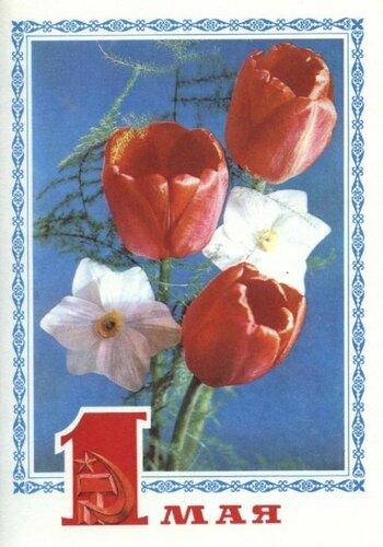 С праздником 1 мая! Фото Г. Костенко 1977 (14) открытка поздравление картинка