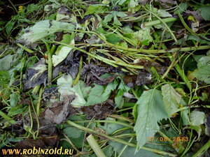 преющая трава