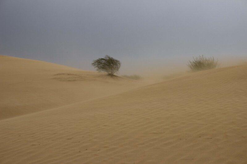 песчаная буря в пустыне Кубучи (пески Кузупчи, Kubuqi desert)