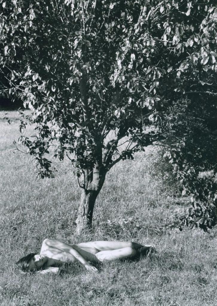 1983. Обнаженная под деревом
