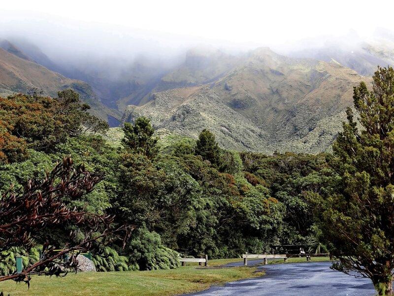 Новой Зеландия