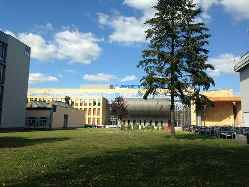Жешувский университет - студенты из всех европейских стран учатся здесь по обмену