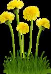 Flora ClipArt 116.png