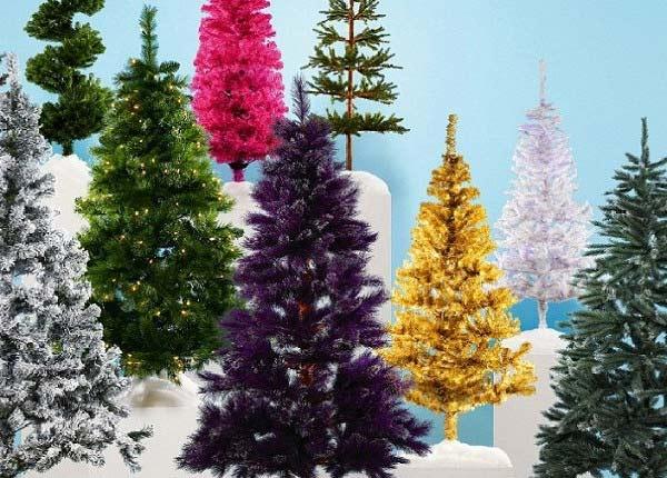 выбор новогодней ёлки
