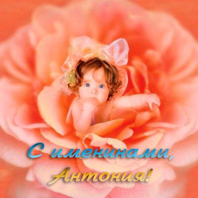 С именинами, Антония! открытка поздравление картинка