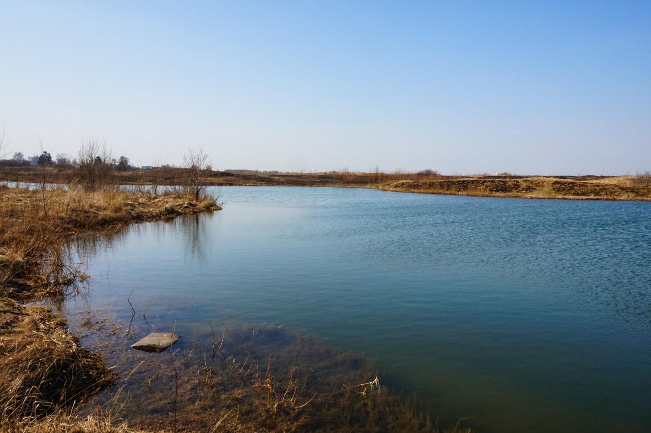 рыбалка бурцевский пруд химки