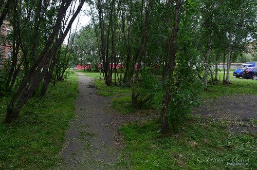 Фотография Инты №8108  Аллея между Воркутинской 10 и 6, вид в сторону школы №8 02.07.2015_17:22