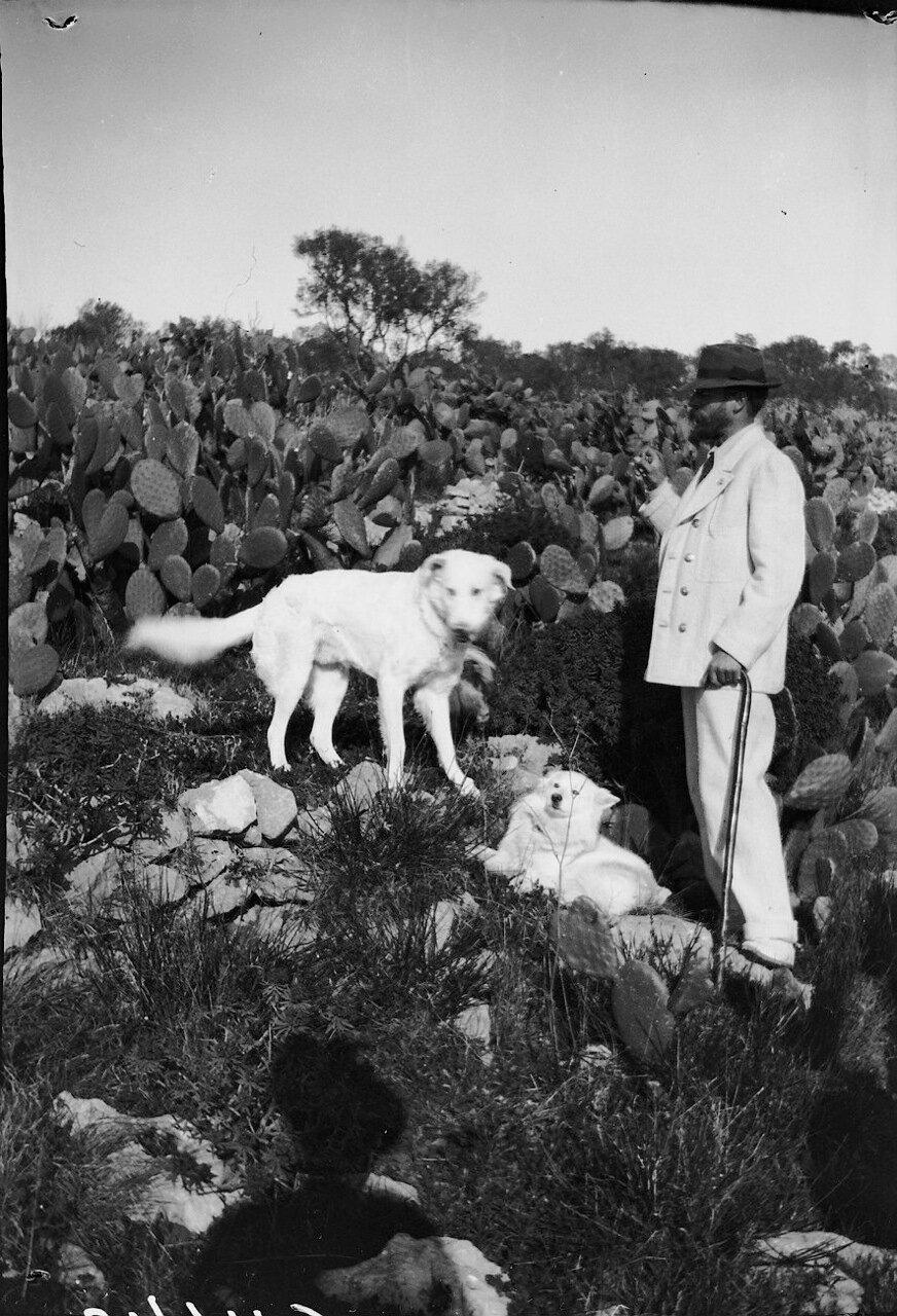 1900. Аксель Мунте (31 октября 1857, Оскарсхамн, Кальмар — 11 февраля 1949, Стокгольм— шведский врач, писатель) на Капри
