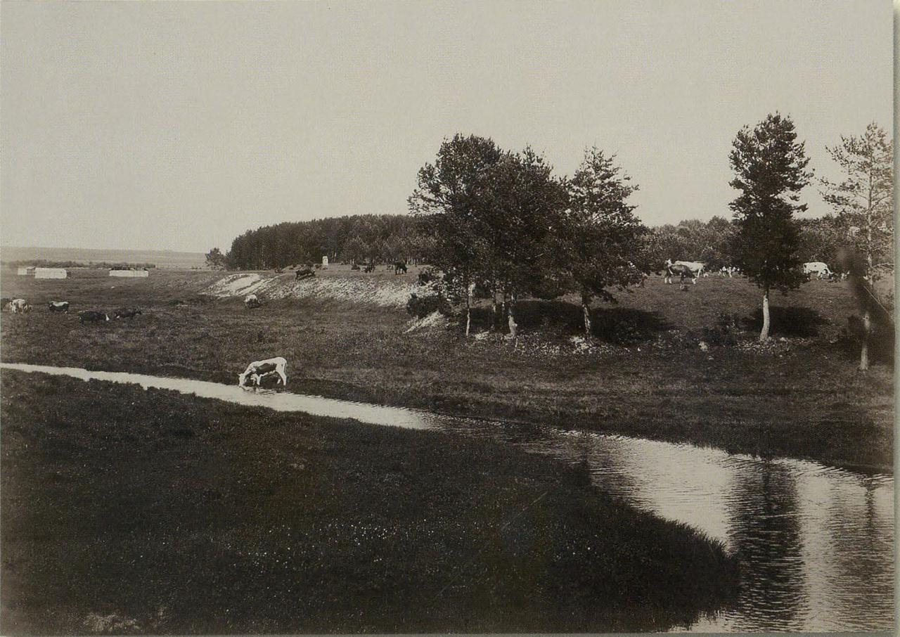 Река Яуза в имении Перловка