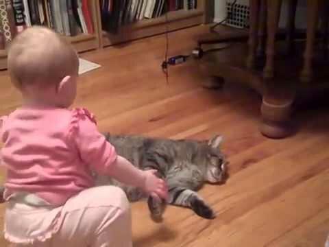 Офигеть, у кота железные нервы.