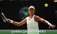 http://img-fotki.yandex.ru/get/9824/14186792.49/0_da41f_1f3ecdc0_orig.jpg