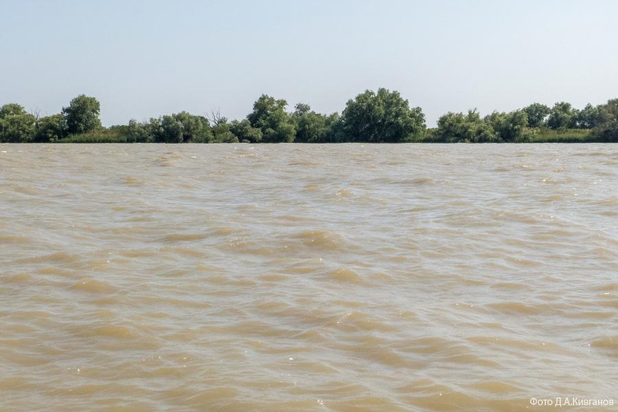 Дунайская вода