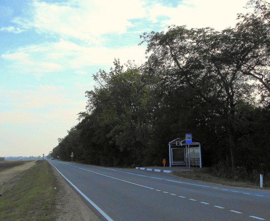 В дороге ... DSCN0032 - 2.JPG