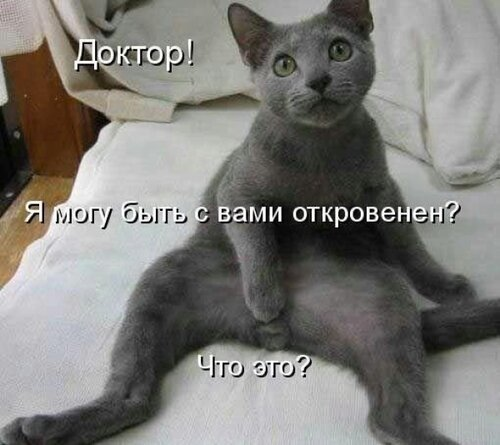 http://img-fotki.yandex.ru/get/9824/97761520.1df/0_84402_a31938b4_L.jpg