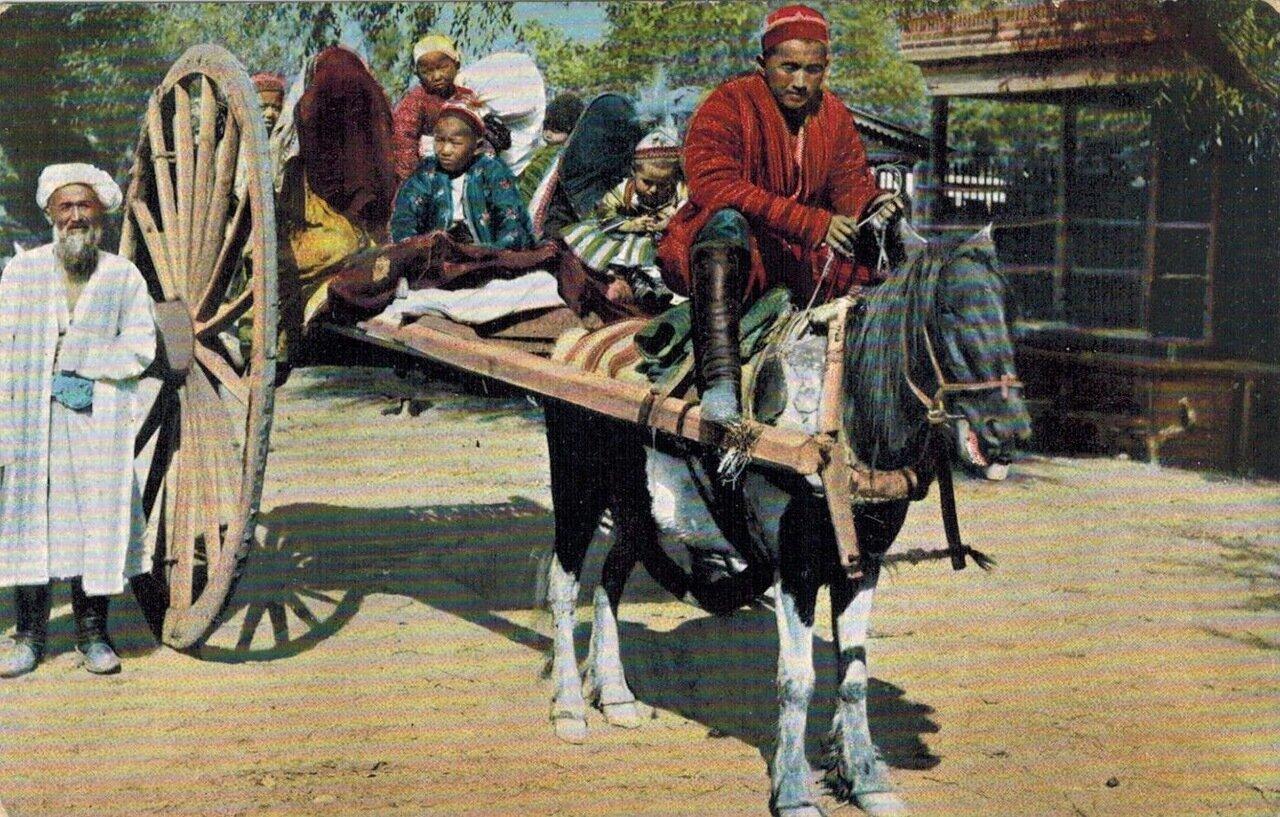 Типы Средне-Азиатских владений