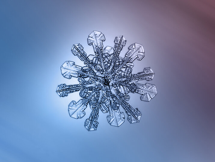 Фото «Снежинки - Застывшая красота»